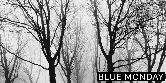 Paula Abrahao | BLOG - Blue Monday