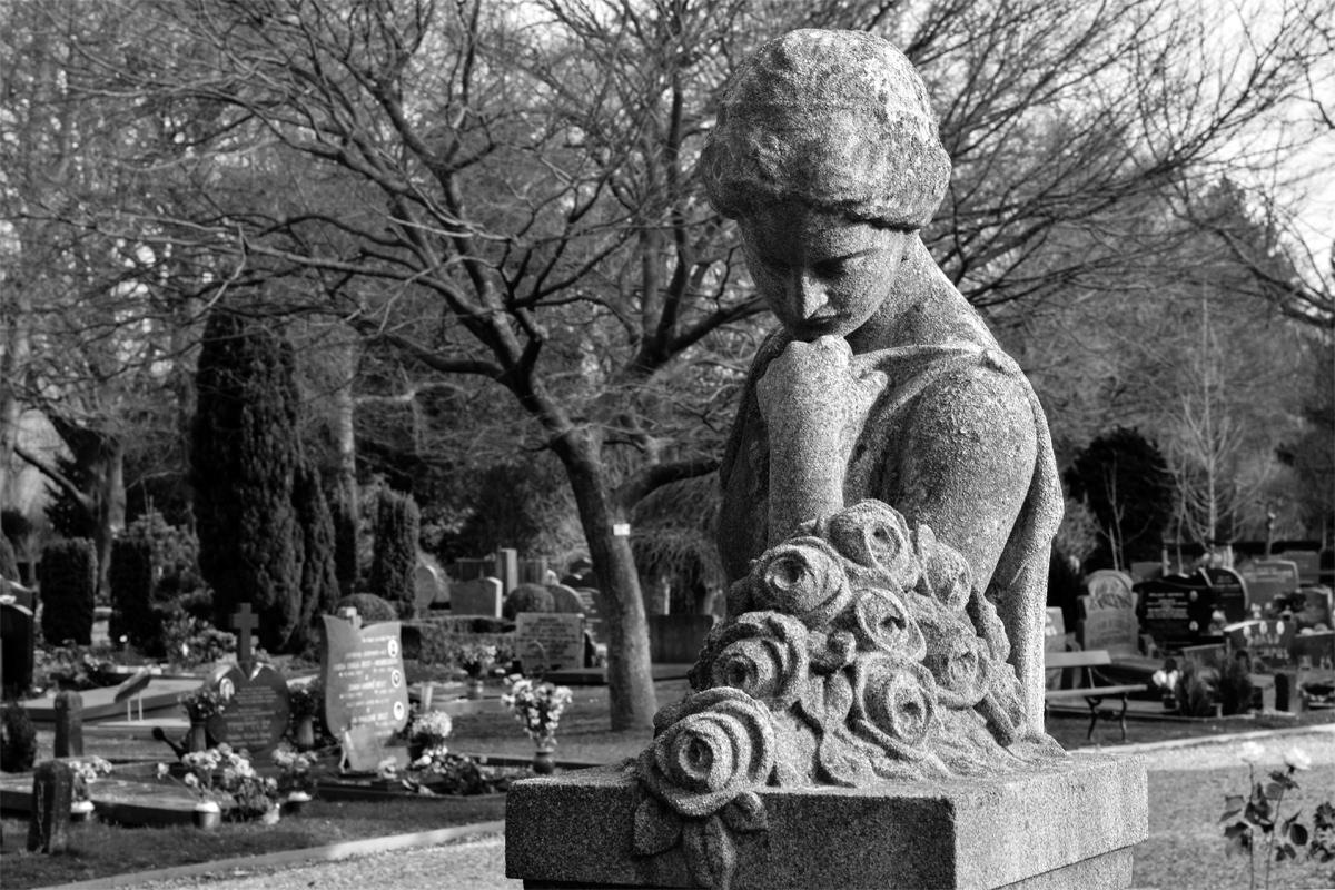 Paula Abrahao | BLOG - Begraafplaats