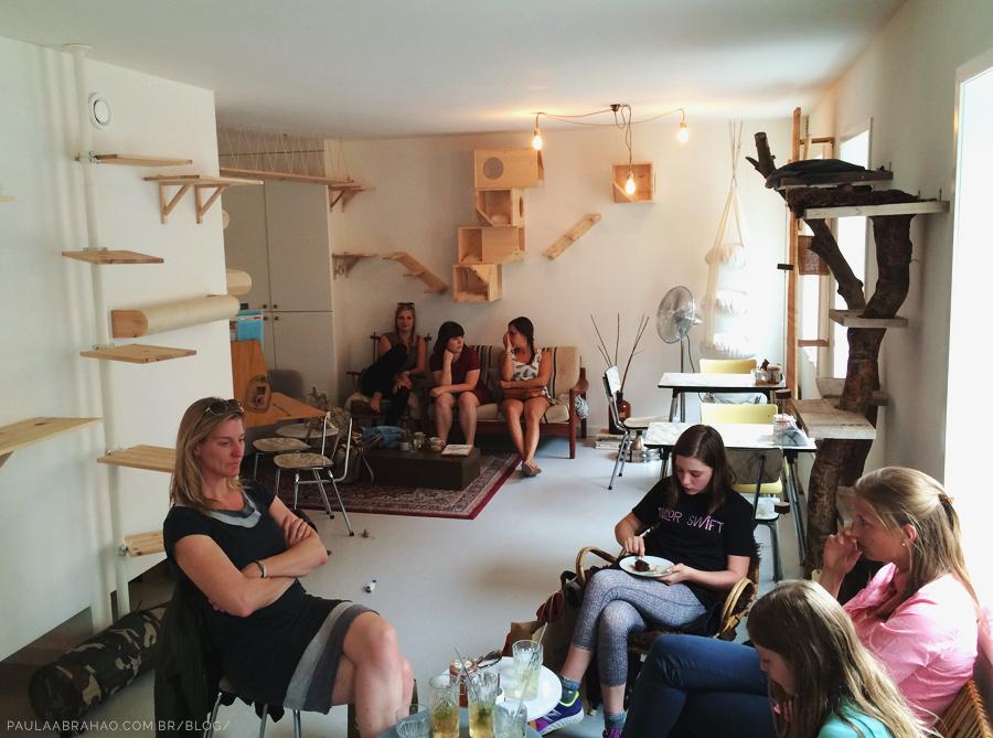 Paula Abrahao | BLOG - Kattencafe Kopjes, o primeiro cat café da Holanda