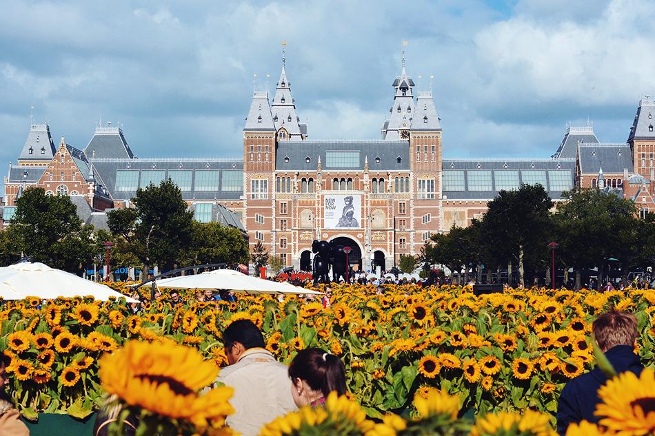 Paula Abrahao | BLOG - Van Gogh's Sunflowers