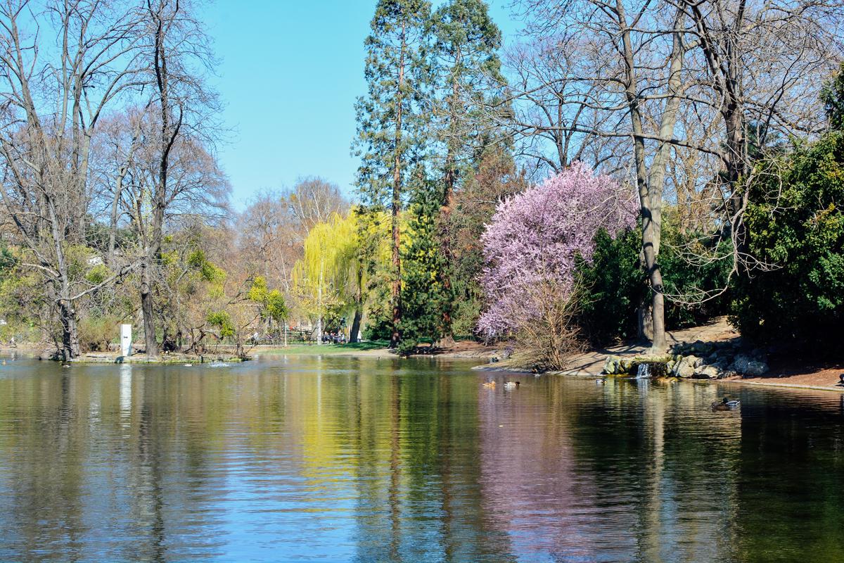 Paula Abrahao | BLOG - Viena Parte 1: Primavera