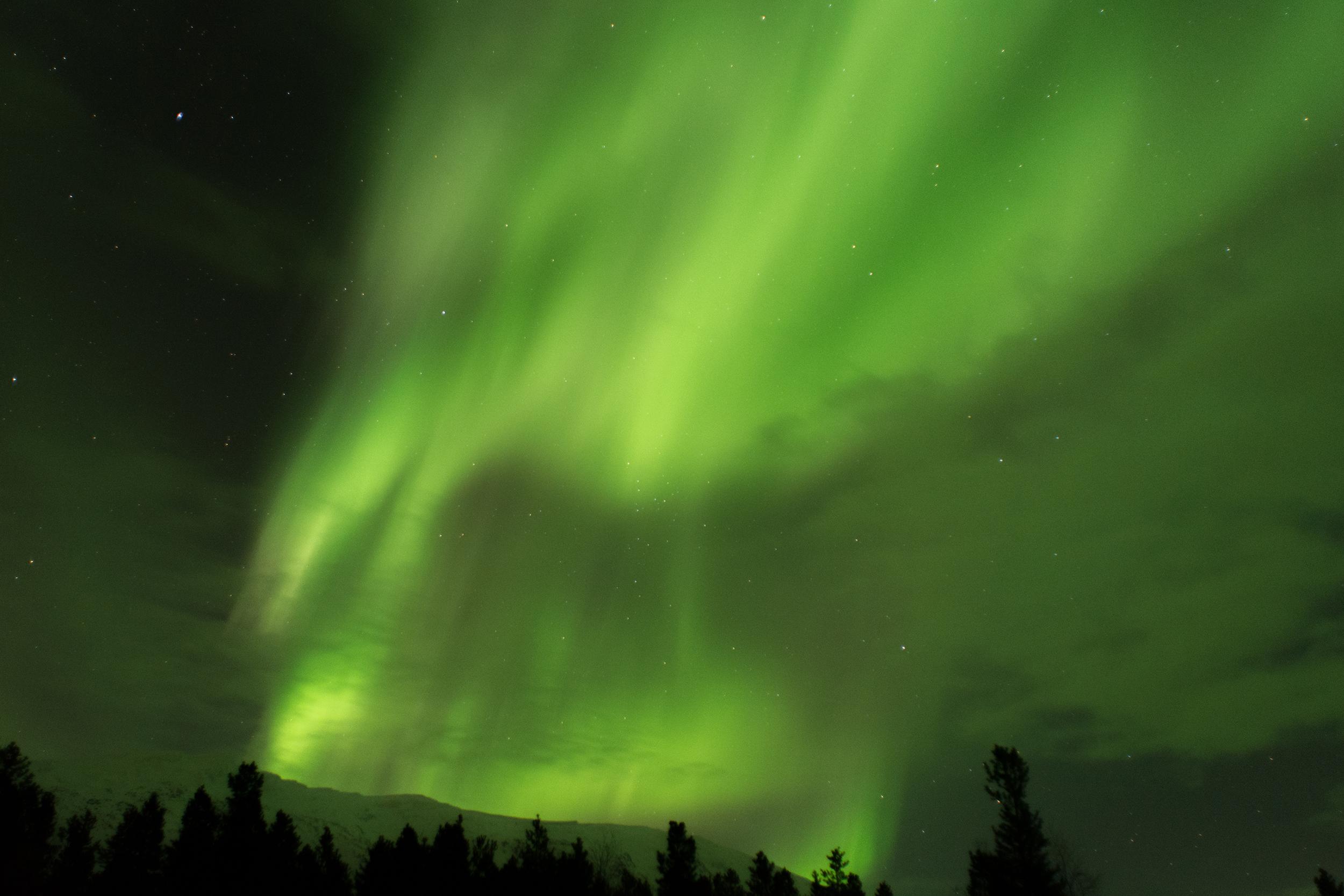 Paula Abrahao | Aurora Boreal em Tromsø, Noruega